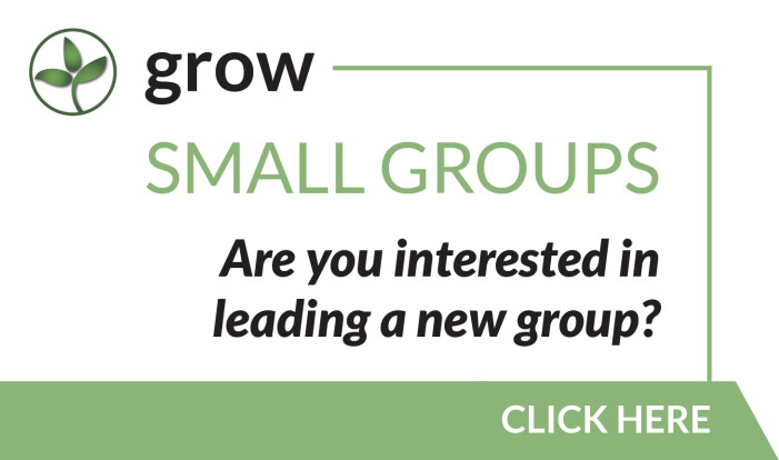 Small Group Leader
