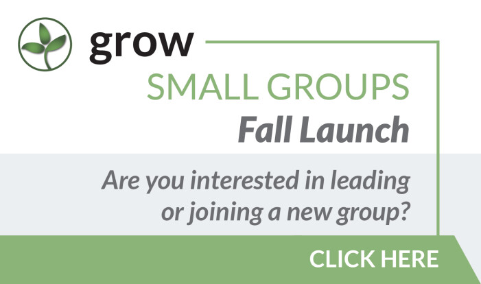 Small Group Fall Launch
